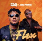 [Music] CDQ Feat. King Promise – Flex (Remix)