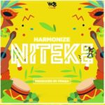 DOWNLOAD MUSIC: Harmonize – Niteke | Afro Bongo