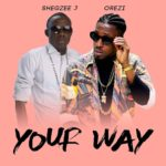 Music: Shegzee J Ft. Orezi – Your Way