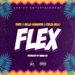 Download Music: Terri Ft. Bella Shmurda x Ceeza Milli – Flex
