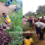 Female Thief Who Went To Steal Cassava at Night Caught by Resident in Mbioto, Akwa Ibom State