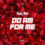 LYRICS: Shatta Wale » Do Am For Me