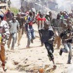 Herdsmen And Their Cows Chased Out Of Ekiti State By Amotekun