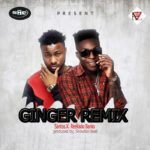 DOWNLOAD MUSIC: Santos Ft. Reekado Banks – Ginger (Remix)